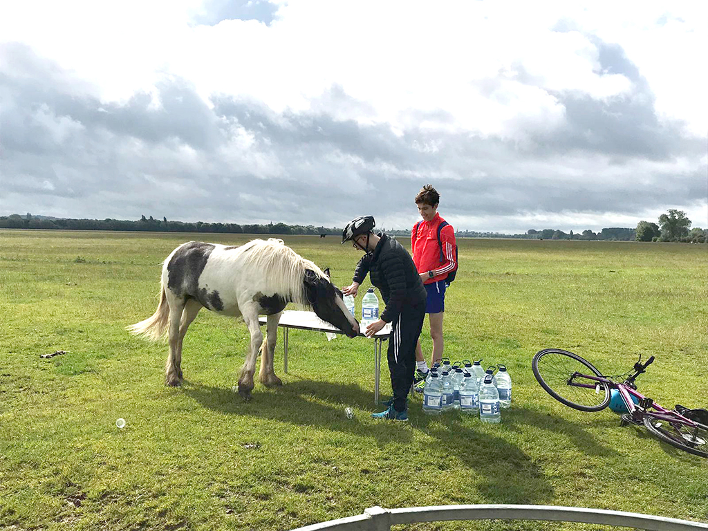 Giving a horse a drink in Port Meadow